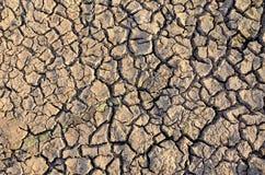 Unfruchtbare Erde Trocknen Sie gebrochene Erde Gebrochenes Schlammmuster Boden in den Sprüngen Creviced Beschaffenheit Dürrenland Lizenzfreie Stockbilder