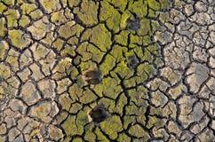Unfruchtbare Erde Trocknen Sie gebrochene Erde Gebrochenes Schlammmuster Boden in den Sprüngen Creviced Beschaffenheit Dürrenland Lizenzfreie Stockfotos