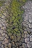 Unfruchtbare Erde Trocknen Sie gebrochene Erde Gebrochenes Schlammmuster Boden in den Sprüngen Creviced Beschaffenheit Dürrenland Stockfoto