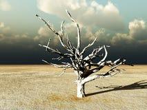Unfruchtbare Wildnis 9 Lizenzfreie Stockfotografie