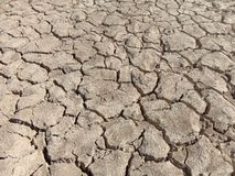 Unfruchtbarer Boden lizenzfreie stockfotos