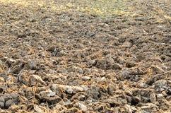 Unfruchtbarer Boden Stockbild