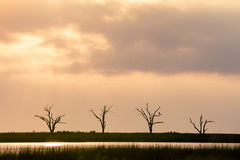 Unfruchtbarer Sonnenaufgang Stockfoto