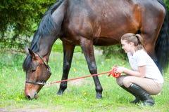 Ung ägare för tonårs- flicka som ömt ser på hennes favorit- häst royaltyfria foton