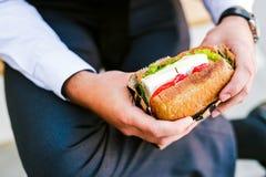 Ung affärsman som äter den utomhus- smörgåsen royaltyfri fotografi