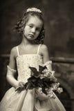 Ung aristokrat royaltyfri foto