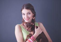 Ung attraktiv chihuahua f?r kvinnainnehavhund, p? gr? bakgrund royaltyfria bilder