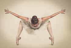 Ung ballerinadansare i ballerinakjol Royaltyfri Foto
