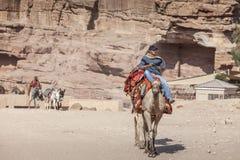 Ung beduin som rider en kamel Fotografering för Bildbyråer