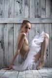 Ung behagfull ballerina Arkivfoto