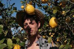 Ung bonde bland citroner arkivfoton