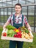Ung bonde framme av ett växthus med grönsaker Fotografering för Bildbyråer