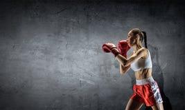 Ung boxarekvinna Blandat massmedia Blandat massmedia Fotografering för Bildbyråer