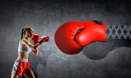 Ung boxarekvinna Blandat massmedia Blandat massmedia Arkivbild