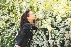 Ung brunett på bakgrund för vita blommor Arkivfoton