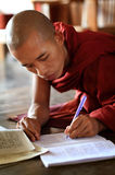 Ung buddistisk munk Arkivbild