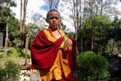 Ung buddistisk munk Fotografering för Bildbyråer