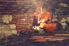 Ung buddistisk novismunk Arkivfoto
