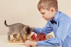 Ung chessplayer med den gulliga kattungen spelar schack Arkivbild