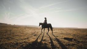 Ung cowgirl på den bruna hästen i ultrarapid utomhus