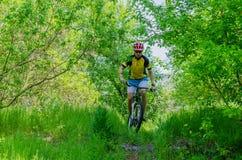 Ung cyklist som bär en hjälm som rider till och med skogen, ett b Royaltyfri Fotografi