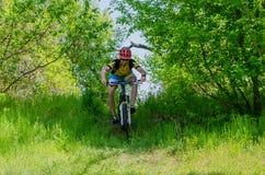 Ung cyklist som bär en hjälm som rider till och med skogen, ett b Royaltyfri Bild