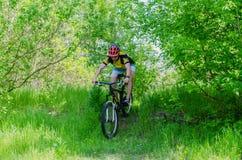Ung cyklist som bär en hjälm som rider till och med skogen, ett b Royaltyfria Foton
