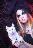 Ung dam med katten Royaltyfria Bilder