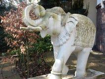 Ung elefant av den vita stenen Fotografering för Bildbyråer