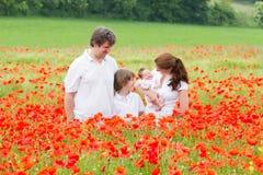 Ung familj med två ungar - son och nyfödd dotter - som poserar i vallmoblommafält royaltyfria foton