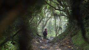 Ung flicka i djungel lager videofilmer
