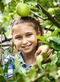 Ung flicka i en äpplefruktträdgård Royaltyfria Foton