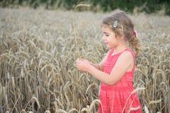 Ung flicka i ett skördfält med havre lite varstans Royaltyfria Bilder