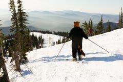 Ung flicka i roliga dräkter som skidar på ett berg arkivbild