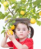 Ung flicka med citronträdet Royaltyfri Foto