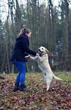 Ung flicka med den vita hunden Royaltyfria Foton