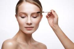 Ung flicka med en sund hud och nakenstudiemakeup Härlig modell på kosmetiska tillvägagångssätt med en borste för att applicera fu Arkivfoto
