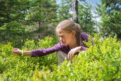 Ung flicka som äter blåbär Fotografering för Bildbyråer