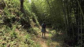 Ung flicka som går i tropisk botanisk trädgård Batumi Georgia arkivfilmer