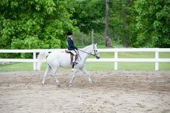 Ung flicka som konkurrerar på hästshowen Fotografering för Bildbyråer