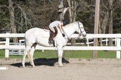Ung flicka som kramar hästen på ridningkursen Royaltyfri Foto
