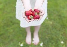 Ung flicka som mycket visar henne händer av jordgubbar Royaltyfri Fotografi