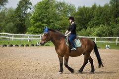 Ung flicka som rider en häst Arkivbilder