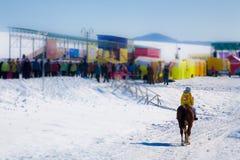 Ung flicka som rider en häst på bakgrunden av Fotografering för Bildbyråer