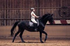 Ung flicka som rider hennes häst Fotografering för Bildbyråer