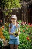 Ung flickaväxtplanta av en blomma arkivbild