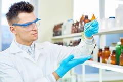 Ung forskare med GMO grönsallatprövkopian Royaltyfria Bilder