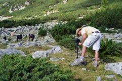 Ung fotograf i berg royaltyfria bilder