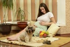 Ung gravid kvinna Arkivfoto