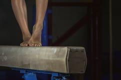 Ung gymnastflickabalansbom Fotografering för Bildbyråer